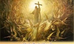 Chủ Nhật 33 Thường niên năm B: Cuộc quang lâm của Con Người