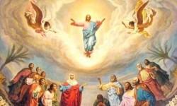 Vì sao Chúa Con về trời : xét phía con người, xét từ Thiên Chúa